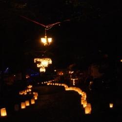Illumination 2011 Photos