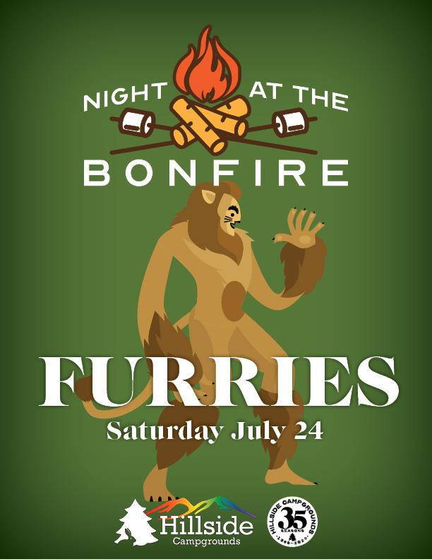 night at bonfire fantasy2-furries
